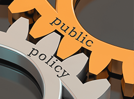 Introduction to Public Policies